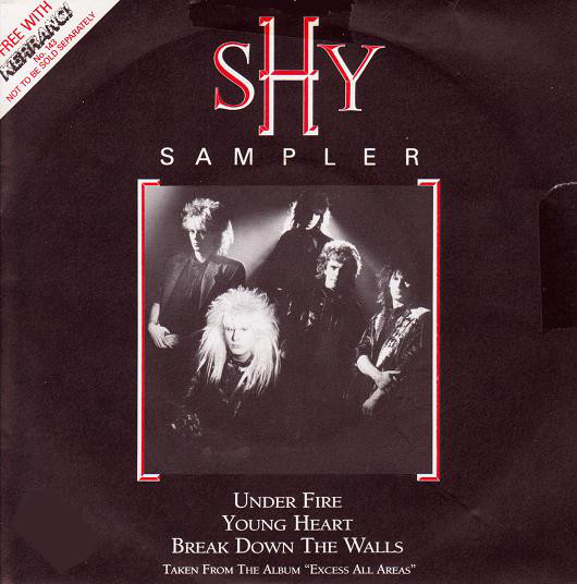 Shy Shy Sampler  Vinyl
