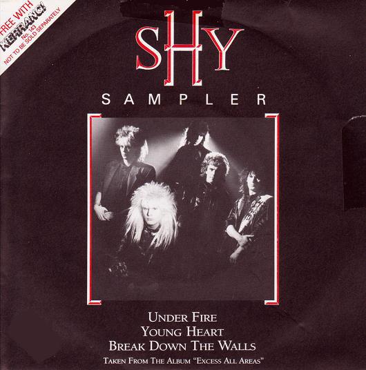 Shy Shy Sampler