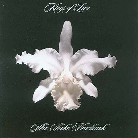 Kings Of Leon Aha Shake Heartbreak Vinyl