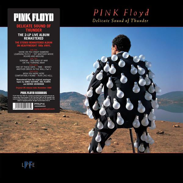 Pink Floyd Delicate Sound Of Thunder Vinyl