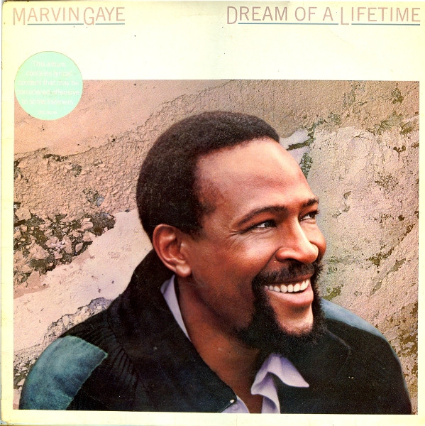 Marvin Gaye  Dream Of A Lifetime Vinyl
