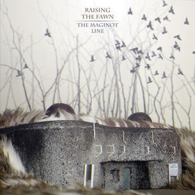 Raising The Fawn The Maginot Line CD