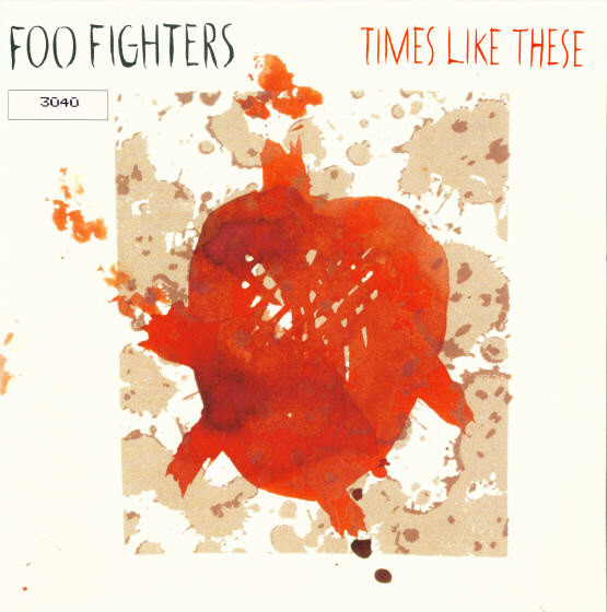 Foo Fighters Times Like These