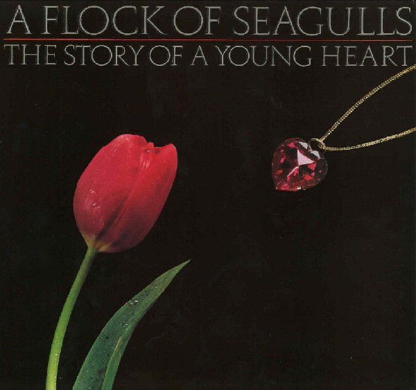 A Flock Of Seagulls  The Story Of A Young Heart