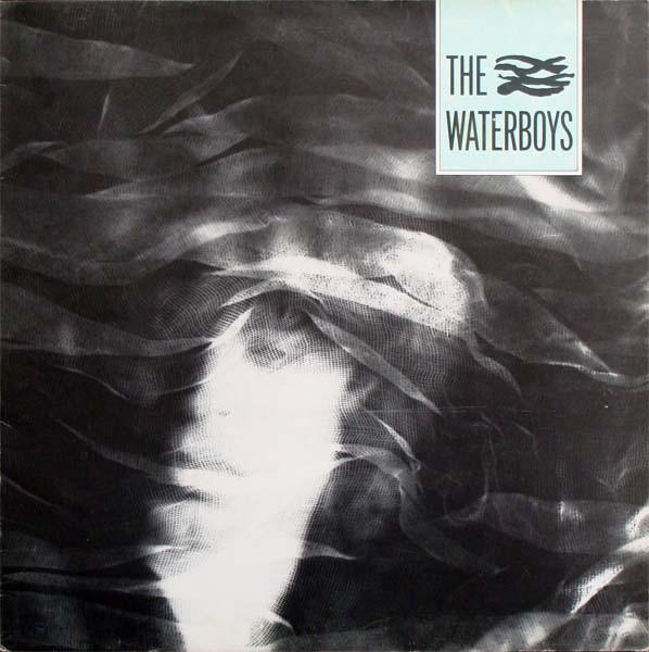 Waterboys (The) Chicken Jazz Vinyl
