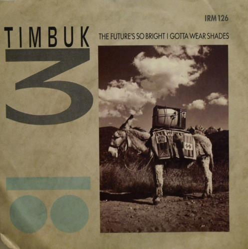 Timbuk 3 The Futures So Bright I Gotta Wear Shades