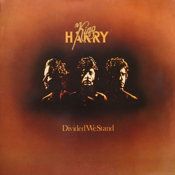 King Harry Divided We Stand Vinyl