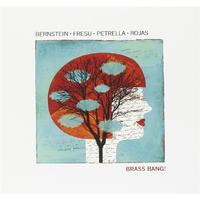Steven Bernstein, Paolo Fresu, Gianluca Petrella, Marcus Rojas Brass Bang! CD