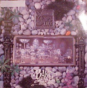 Senator Flux Bake The Candle In The Hall Of Brain Vinyl