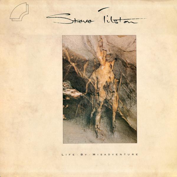 Tilston, Steve Life By Misadventure Vinyl