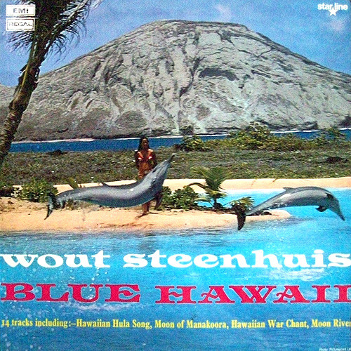 Steenhuis, Wout Blue Hawaii