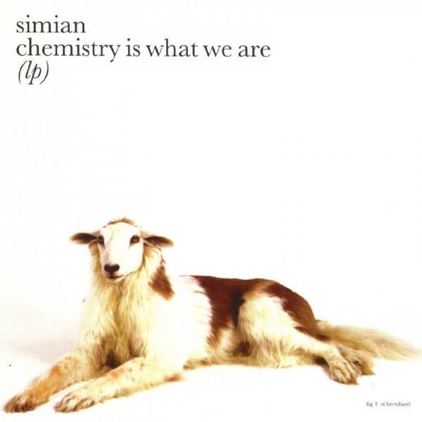 Simian Chemistry Is What We Are