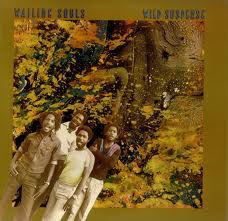 Wailing Souls Wild Suspense
