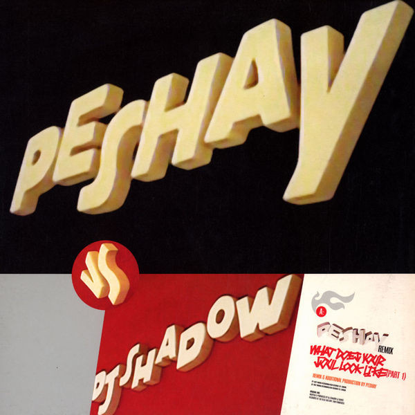 Peshay Vs DJ Shadow / DJ Die Vs DJ Shadow What Does Your Soul Look Like (Part 1) Remixes