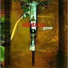 Schtum Grow Vinyl