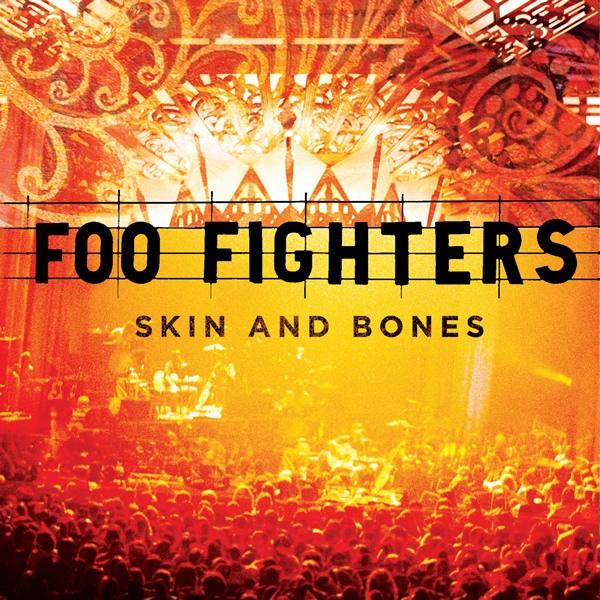 Foo Fighters Skin And Bones Vinyl