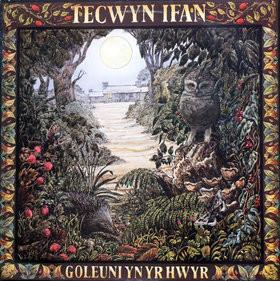 Ifan, Tecwyn Goleuni Yn Yr Hwyr  Vinyl