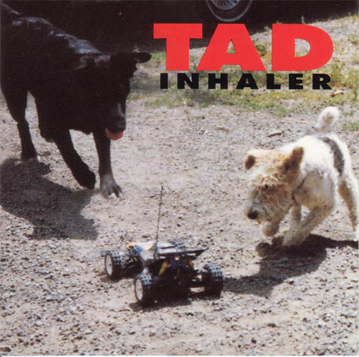 Tad Inhaler