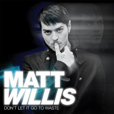Willis, Matt Don't Let It Go To Waste CD