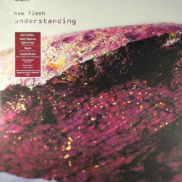 New Flesh Understanding Vinyl