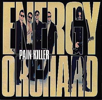 Energy Orchard Pain Killer CD