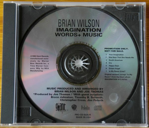 Wilson, Brian Imagination - Words And Music