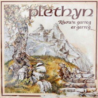 Plethyn Rhown Garreg Ar Garreg Vinyl