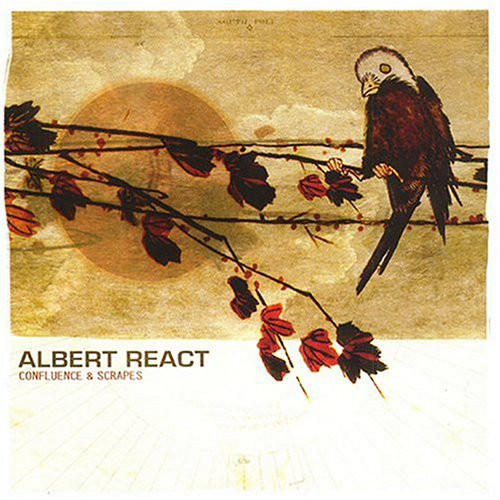 Albert React Confluence & Scrapes CD