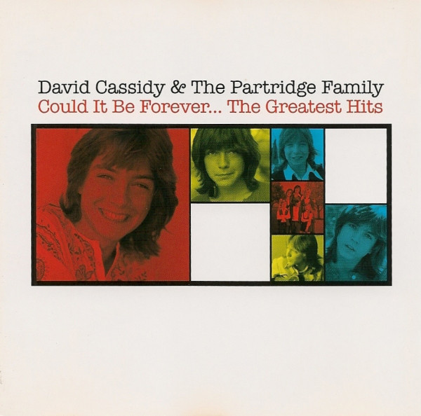 Cassidy, David & The Partridge Family  Could It Be Forever... The Greatest Hits Vinyl