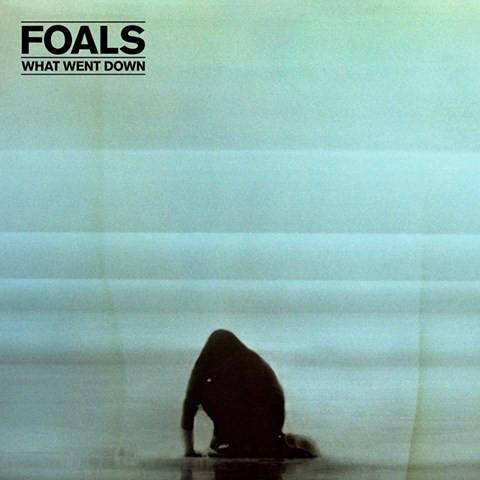 Foals What Went Down Vinyl