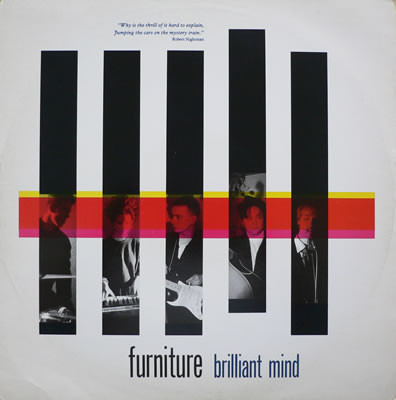 Furniture Brilliant Mind Vinyl
