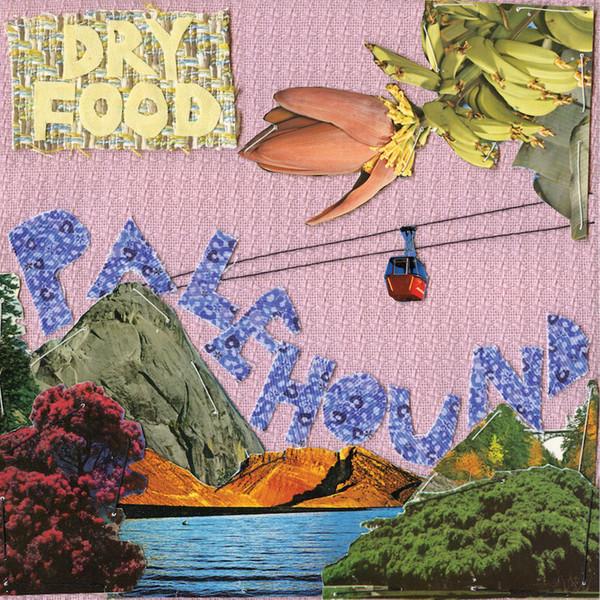 Palehound Dry Food Vinyl