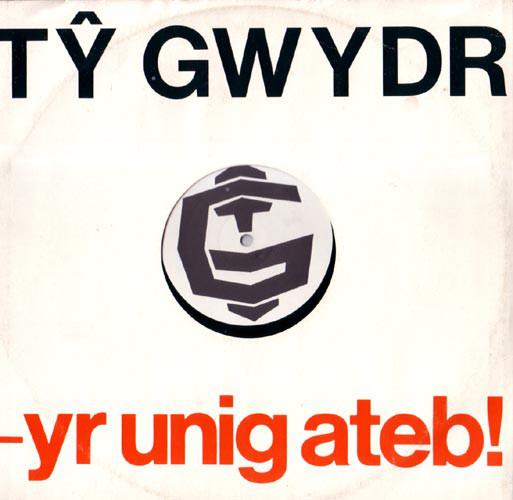Ty Gwydr Yr Unig Ateb!