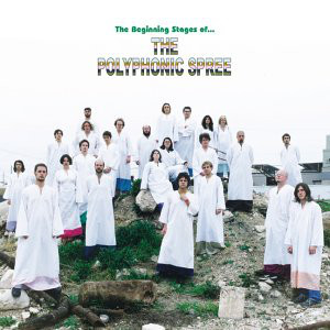 Polyphonic Spree (The) The Beginning Stages Of... CD