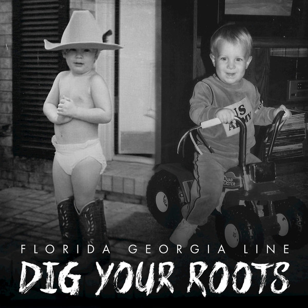 Florida Georgia Line Dig Your Roots Vinyl