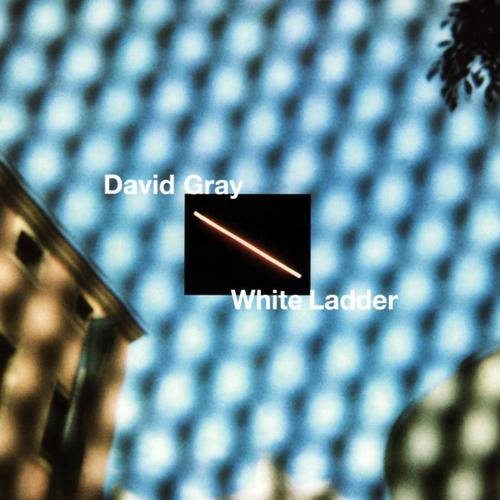 Gray, David White Ladder Vinyl