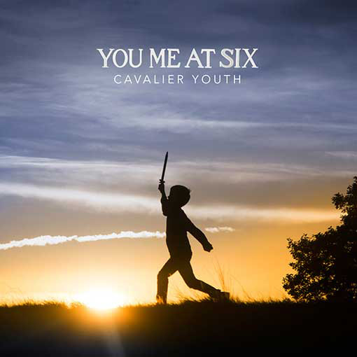 You Me At Six Cavalier Youth  Vinyl