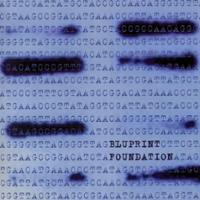Bluprint Foundation CD