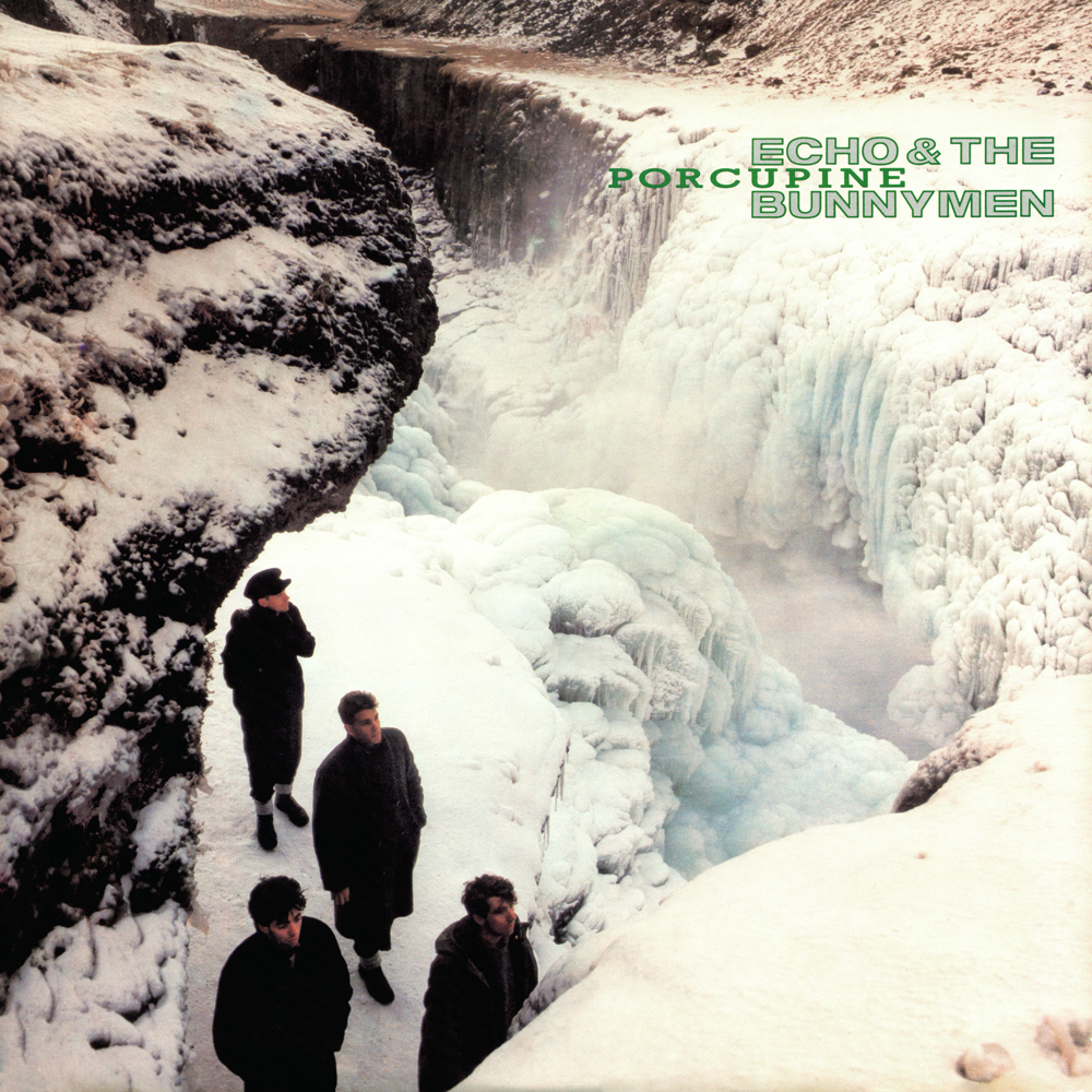 Echo & The Bunnymen Porcupine