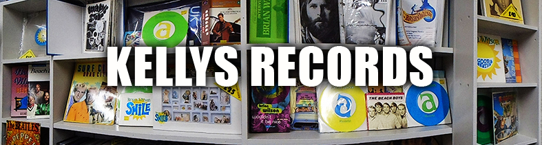 Beach Boys Display shop small